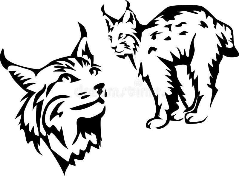Lince ilustração royalty free
