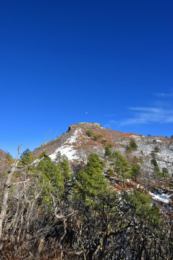 Lincoln National Forest, New Mexico - 2019_01.16: A cold winter day on White Mountain.  stock photography