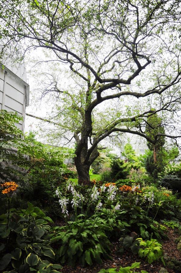Lincoln Park royalty-vrije stock foto