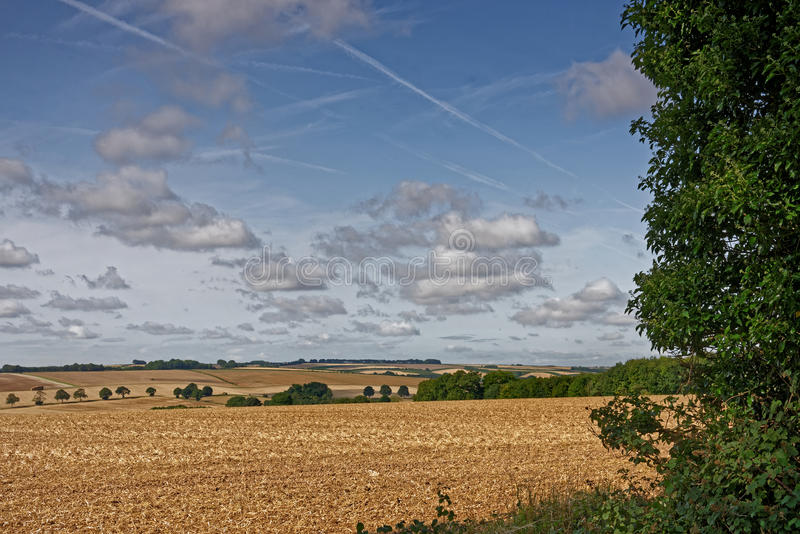 Lincolnshire Wolds,UK, in Late Summer. View across the farmland of the Lincolnshire Wolds,UK,in late summer royalty free stock image