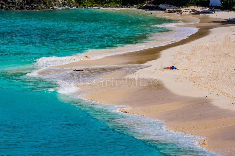 Linda praia branca arenosa cercada por água turquesa na baía de Trunk na ilha de St John imagens de stock