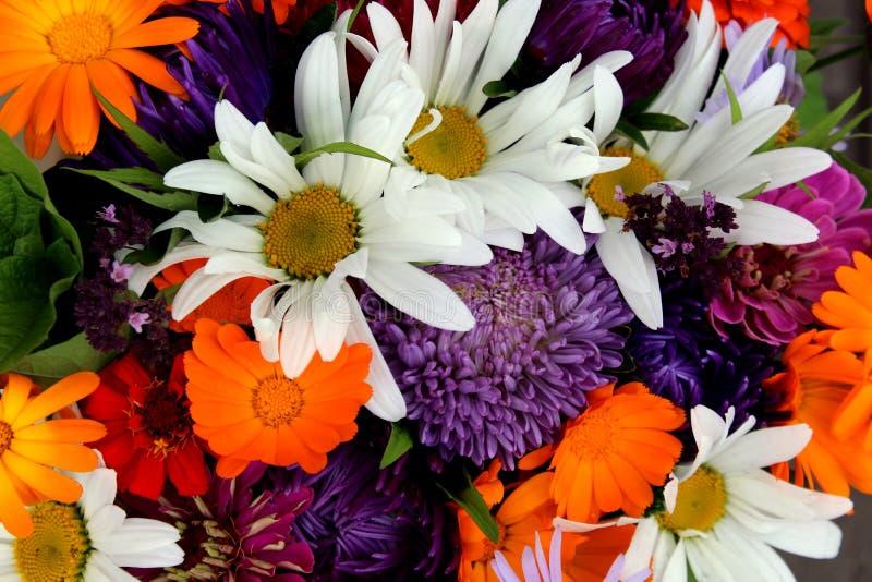 Linda textura floral com humor de verão imagens de stock royalty free