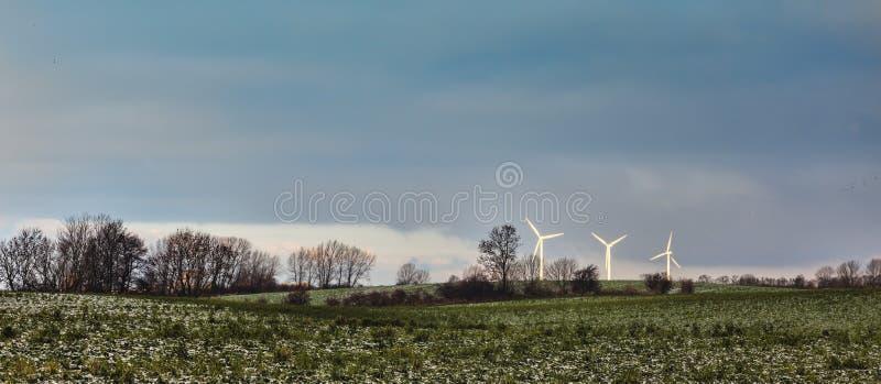 Linda turbiner i danskacontrysiden arkivfoton