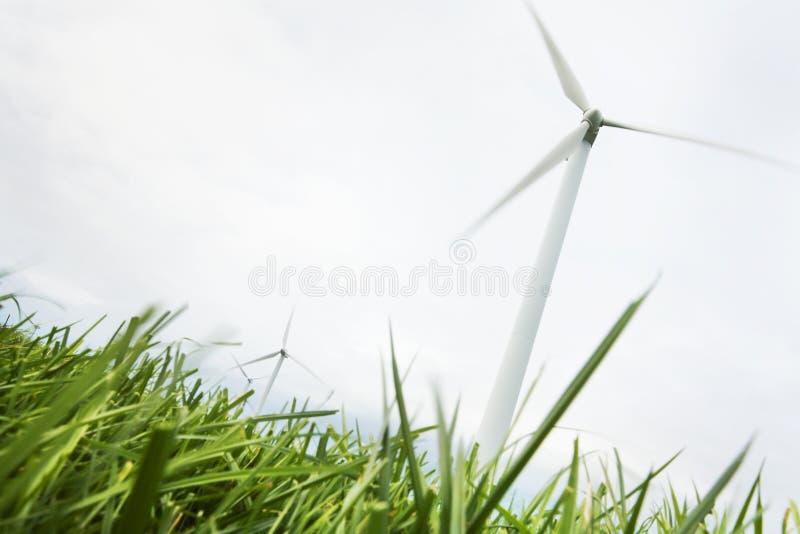 Linda turbiner sätter in in royaltyfri bild