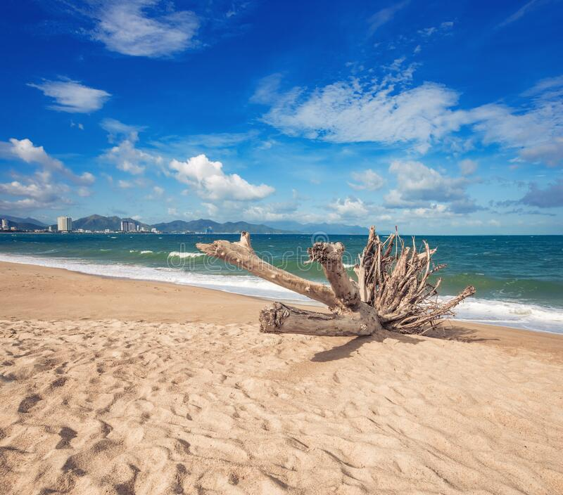 Linda vista cêntrica da praia de Nha Trang imagens de stock royalty free