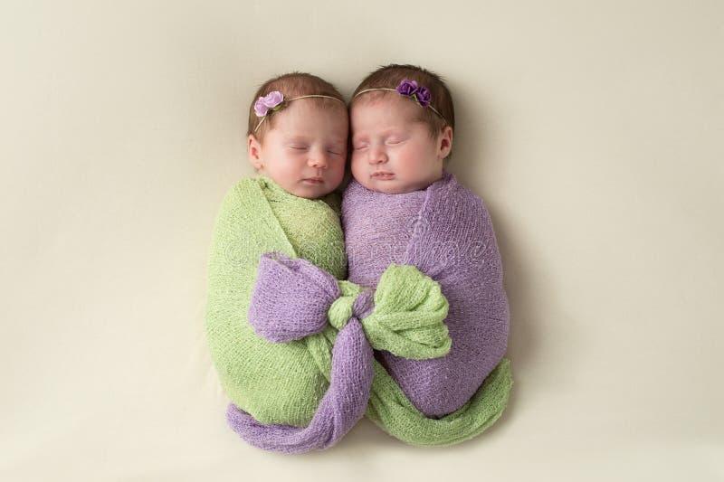 Lindade broderliga tvilling- nyfödda flickor arkivfoton
