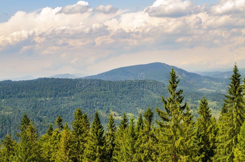 Lindas montanhas Cárpticas na Ucrânia imagens de stock royalty free