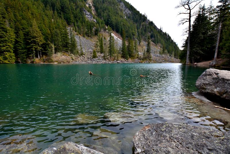 Lindeman See, Chilliwack Kanada BC stockbilder