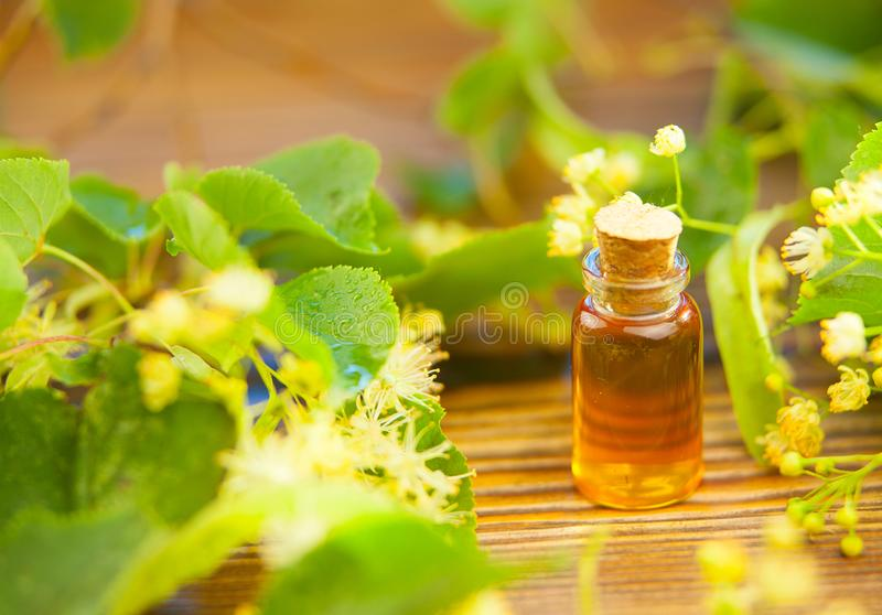Linden essential oil in beautiful bottle on table royalty free stock photos
