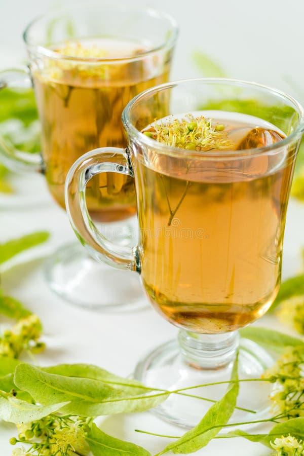 Linden tea in transparent grog glass royalty free stock images
