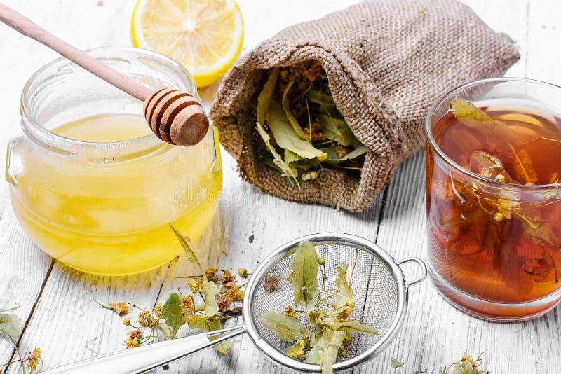 Linden Herbal Tea photographie stock libre de droits