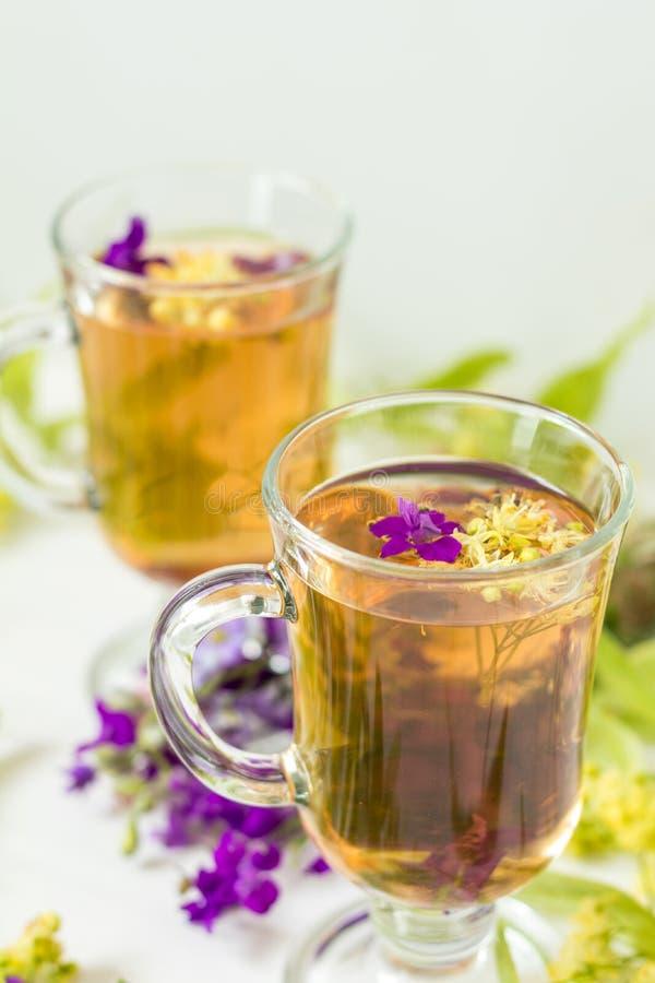 Linden herbal tea in transparent grog glass royalty free stock photos