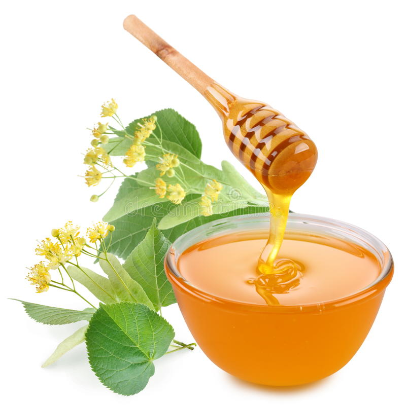 Linden honey. royalty free stock photo