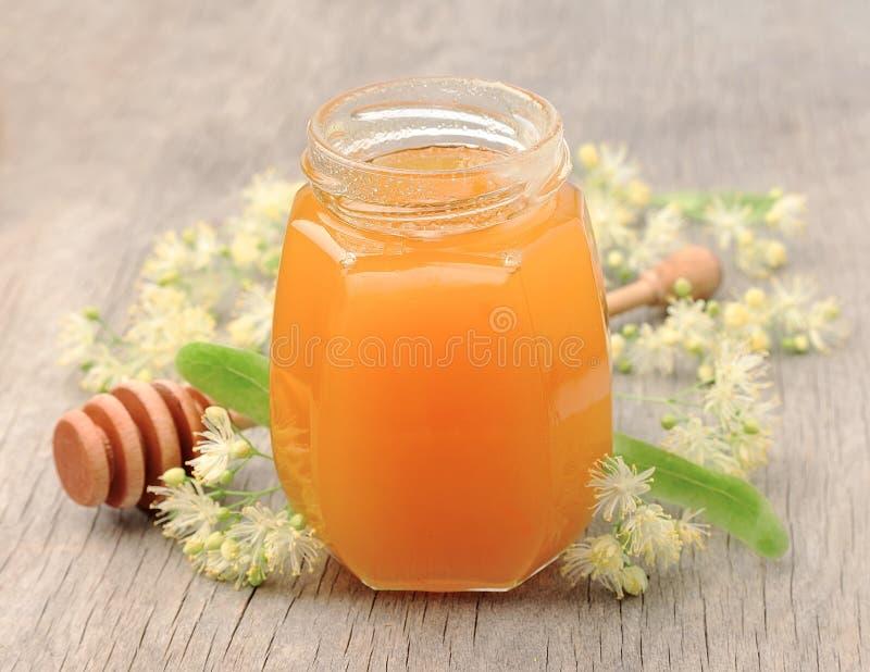 Linden honey. With linden flowers stock photo