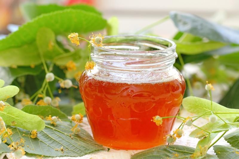 Linden honey in glass jar. And linden flowers royalty free stock photo