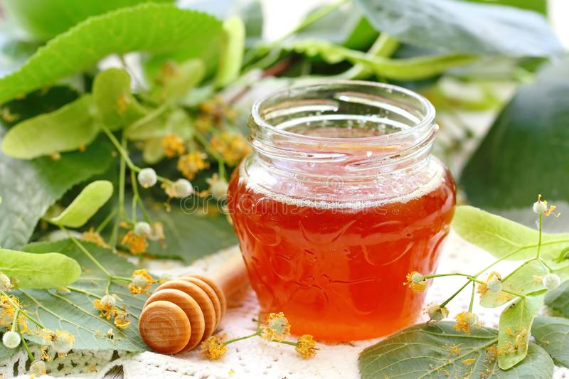 Linden honey in glass jar stock images