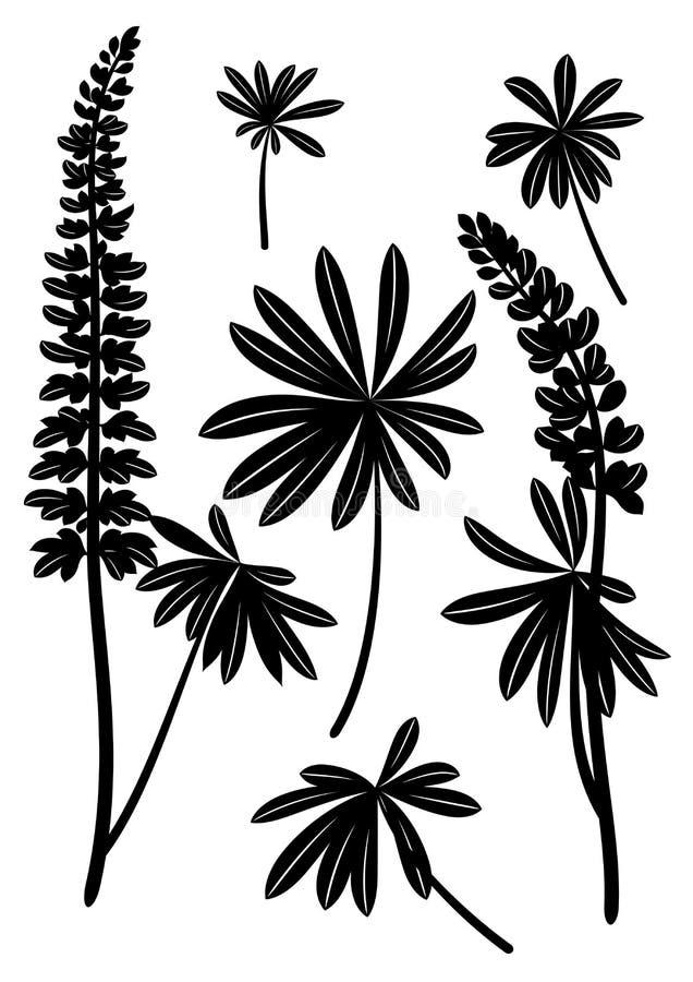 Linden Leaves Pictogram Set ilustração stock