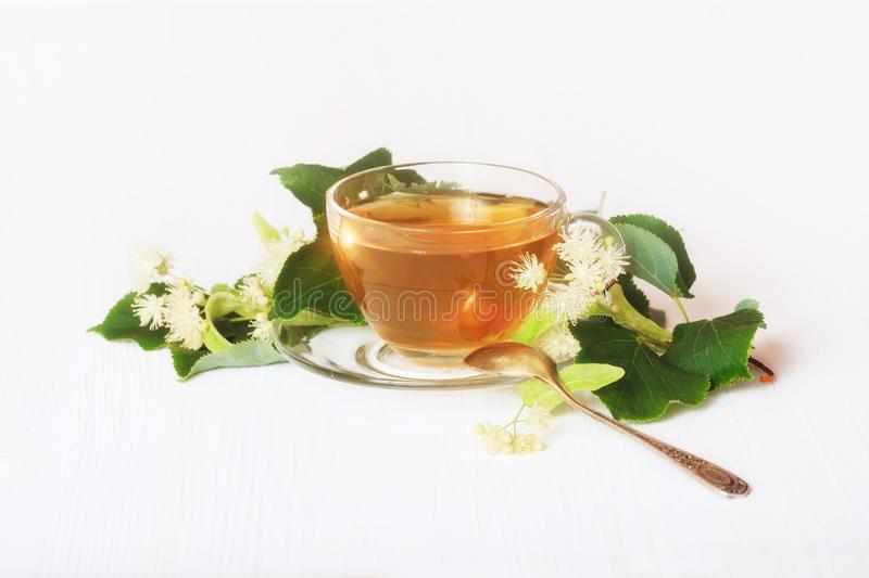 Linden tea on a white table in a glass cup. Flower tea, herbal medicine stock image