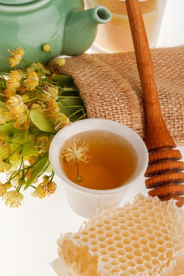 Linden tree flower tea royalty free stock photos