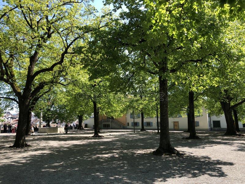 Lindenhof - oasis Histoire-trempée au coeur de la ville de Zurich photos stock