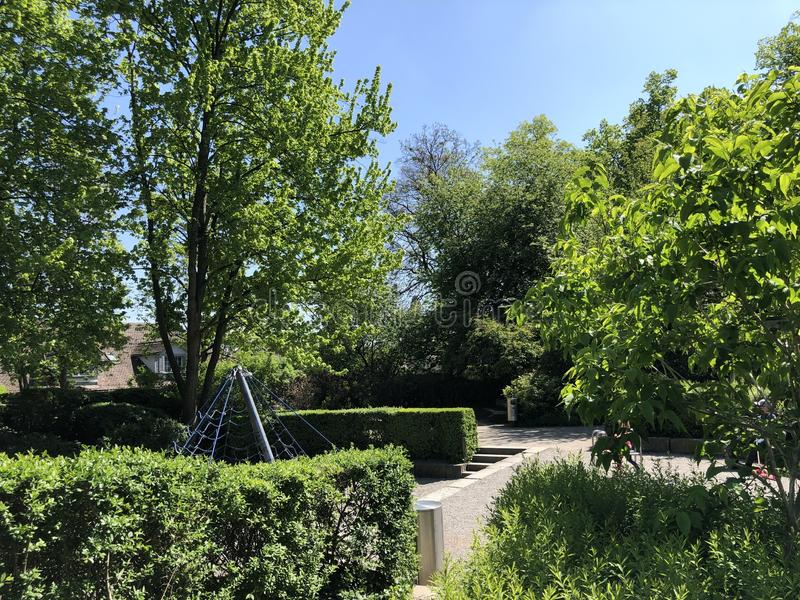 Lindenhof - oasis Histoire-trempée au coeur de la ville de Zurich images stock
