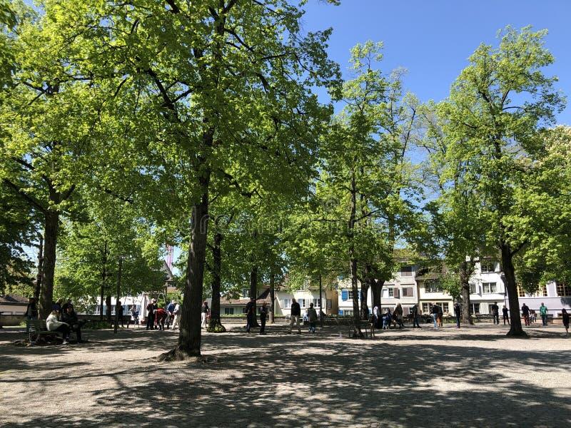 Lindenhof - oasis Histoire-trempée au coeur de la ville de Zurich photo libre de droits