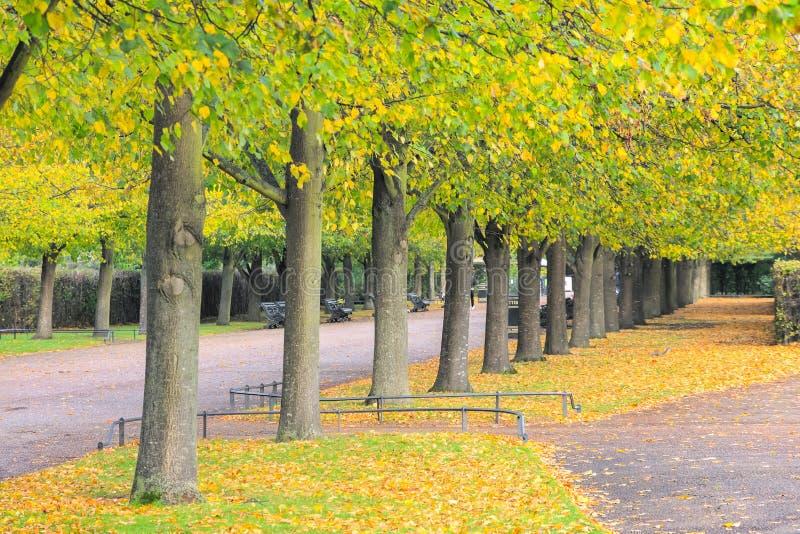 Lindo cenário de outono no Parque Regent, em Londres foto de stock