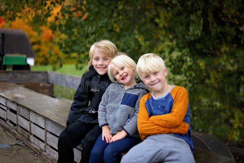 Lindos para arriba paseo liado tres niños del carro del tractor en día frío de la caída fotos de archivo libres de regalías
