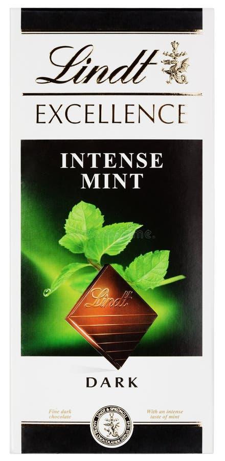 Lindt优秀强烈的薄荷的瑞士黑暗的巧克力块顶视图在白色隔绝的 免版税库存照片