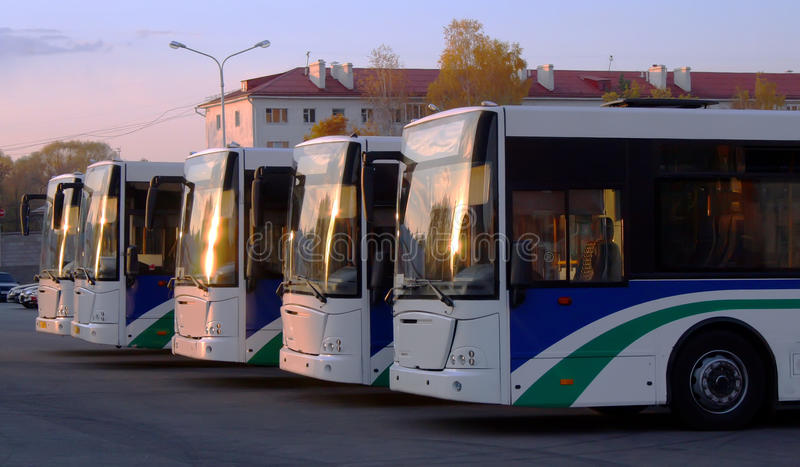 Line of buses stock photo
