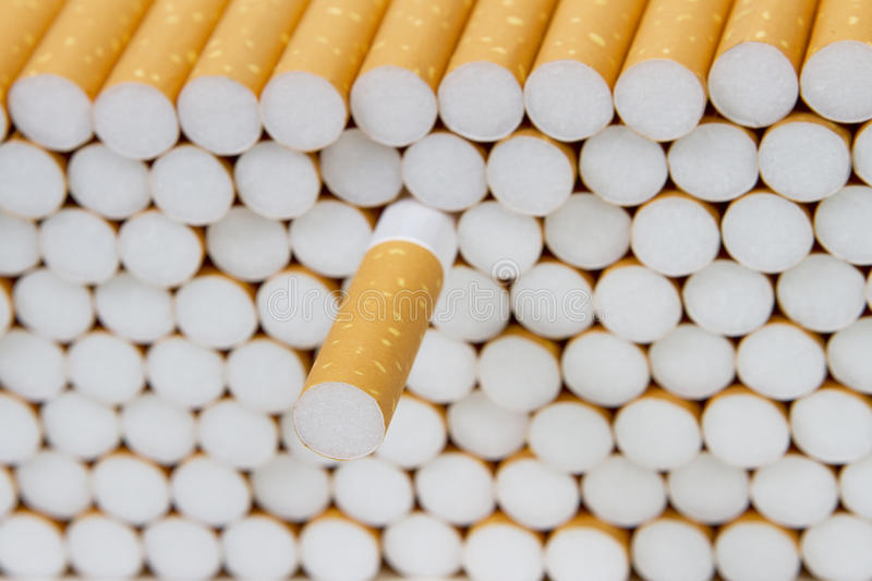 Line of Cigarettes 3 royalty free stock photo