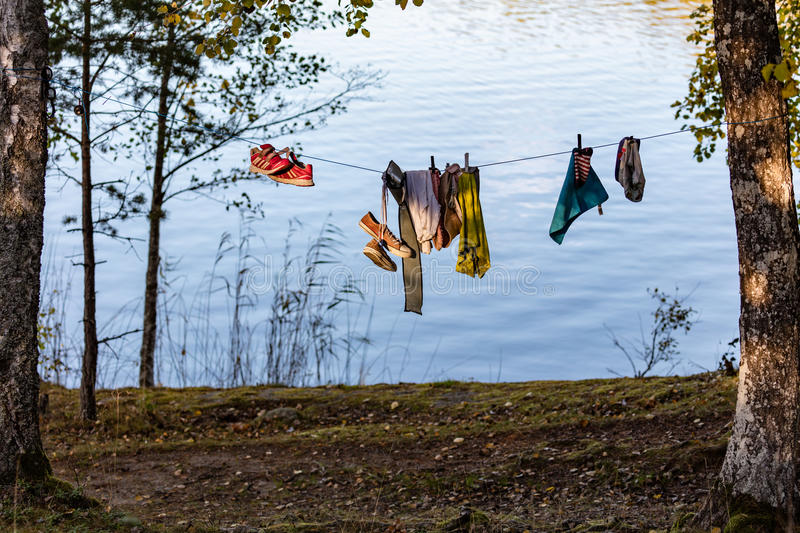 Line with clothes in forest royalty free stock image