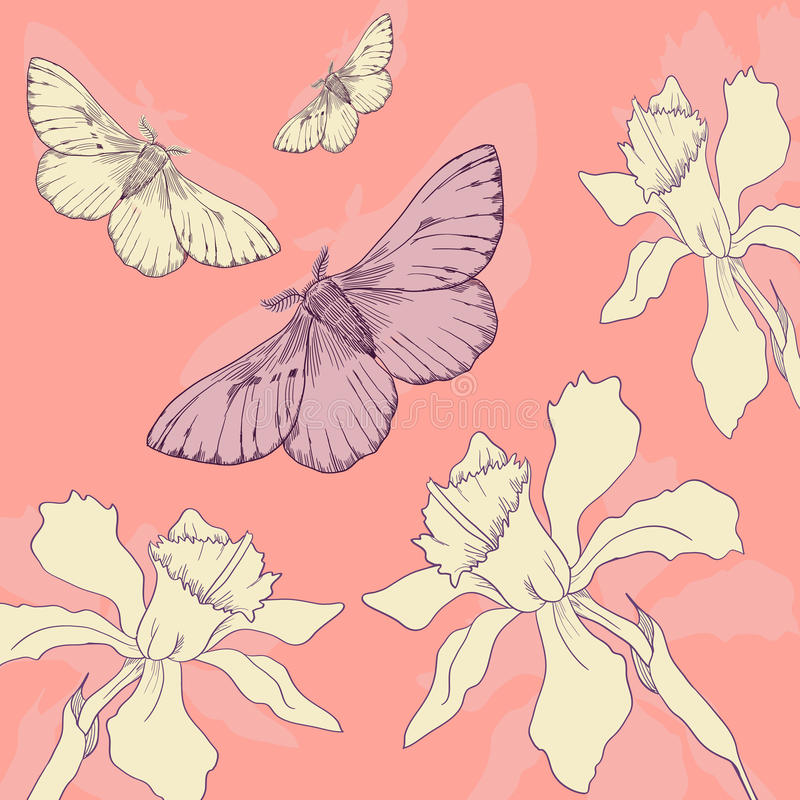 Download Line Drawing Butterflies And Narcissus Stock Vector - Image: 32790649
