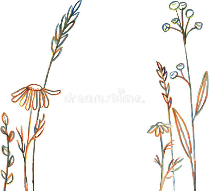 Line Drawing Grass : Line drawing flowers and grass stock vector image