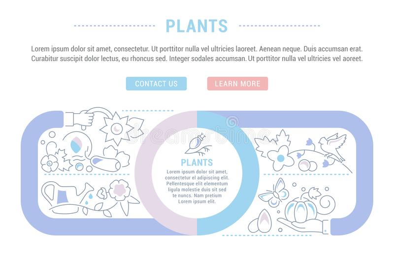 Website Banner and Landing Page of Plants. Line illustration of plants. Concept for web banners and printed materials. Template with buttons for website banner royalty free illustration