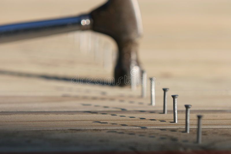 Line of nails and hammer. Line of nails in timber decking, only one nail in focus, very shallow depth of field. Hammer has driven one fully down royalty free stock images