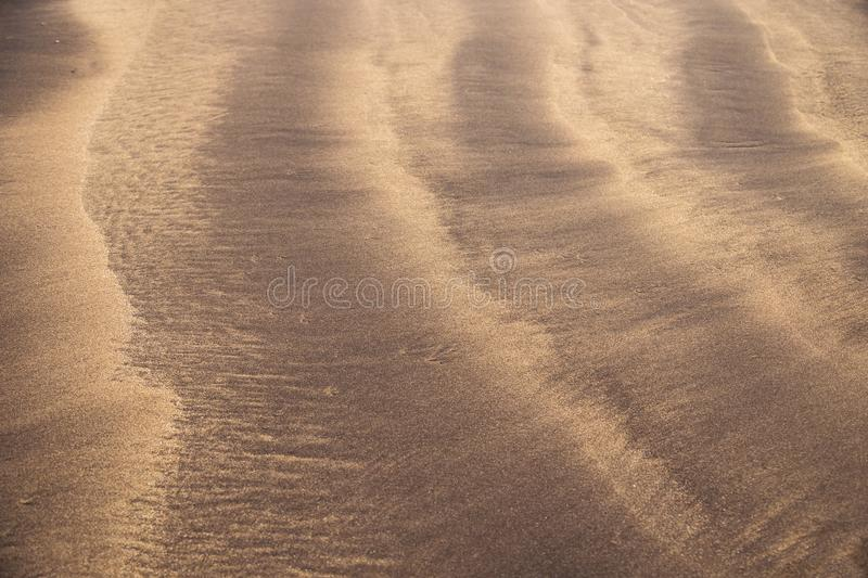 Line Pattern in the mixture of yellow and black sand, Costa Adeje, Tenerife, Canary Islands, Spain royalty free stock image