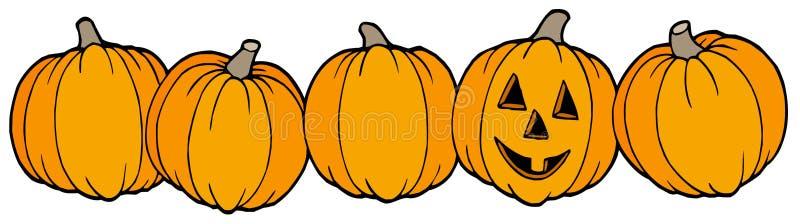 Line of pumpkins royalty free illustration