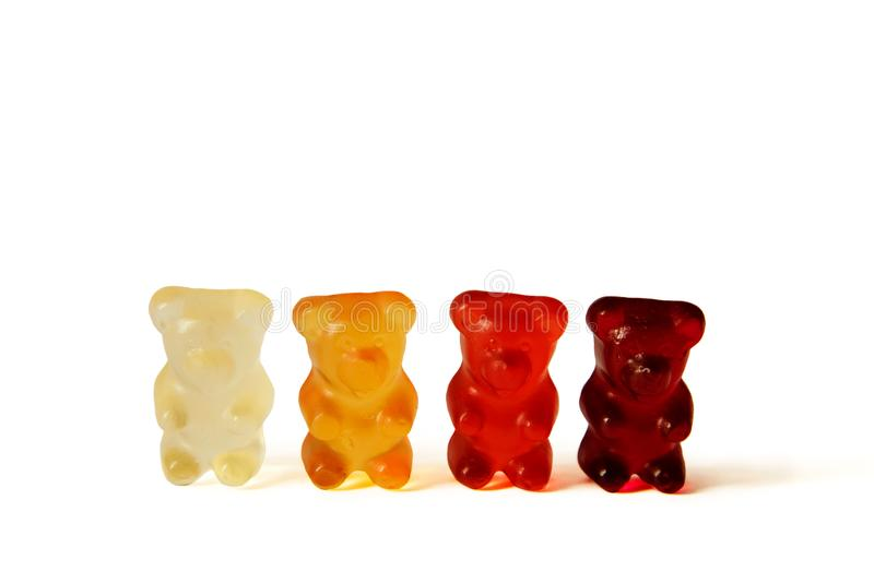 Line of red, orange and burgundy Gummi bears isolated on white stock images