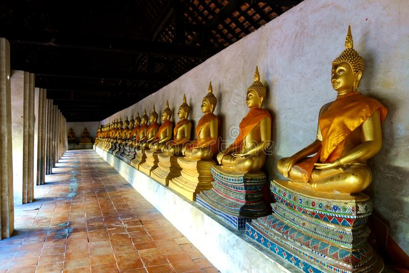 Line of seated Golden Buddhas in Temple Courtyard stock photography