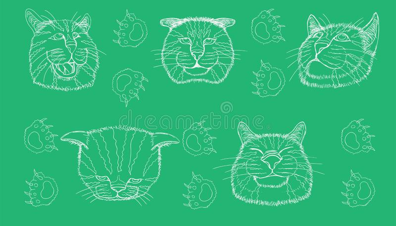 Line sketch of different element cat head funny and cute emotion and footprint. vector illustration eps10. Line sketch of different element cat head funny and royalty free stock image
