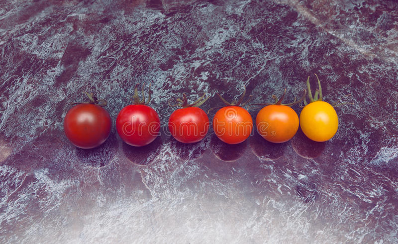 Line of tomatoes. Perfect color gradation line of diverse kinds of tomatoes on the table stock photography