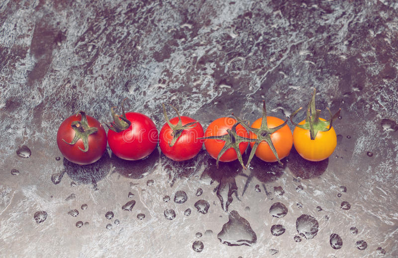 Line of tomatoes. Perfect color gradation line of diverse kinds of tomatoes on wet surface royalty free stock photo