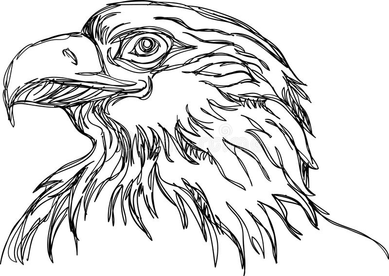 Linea arte capa di Eagle royalty illustrazione gratis