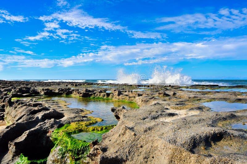 Linea costiera del Brasile fotografie stock libere da diritti