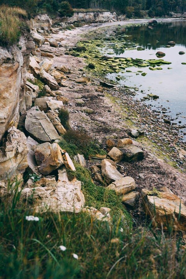 Linea costiera del Mar Baltico con la scogliera e le pietre immagini stock libere da diritti