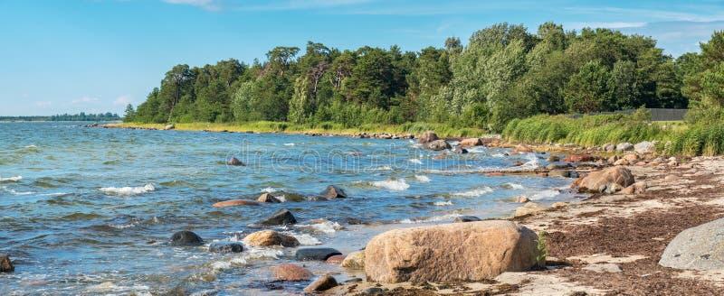 Linea costiera del Mar Baltico L'Estonia, UE fotografia stock libera da diritti
