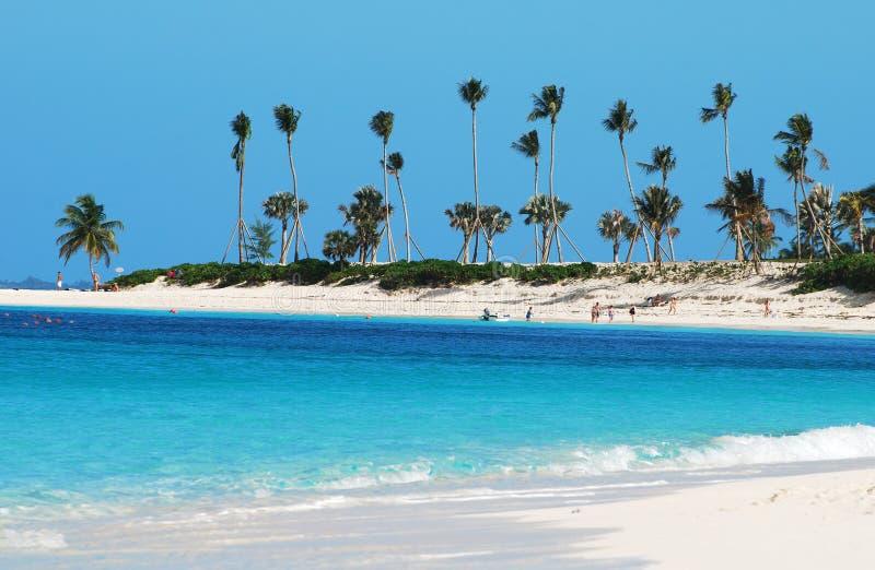 Linea costiera dell'isola di paradiso immagini stock libere da diritti