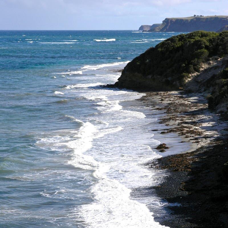 Linea costiera dell'Oceano Antartico al Flinders fotografia stock libera da diritti