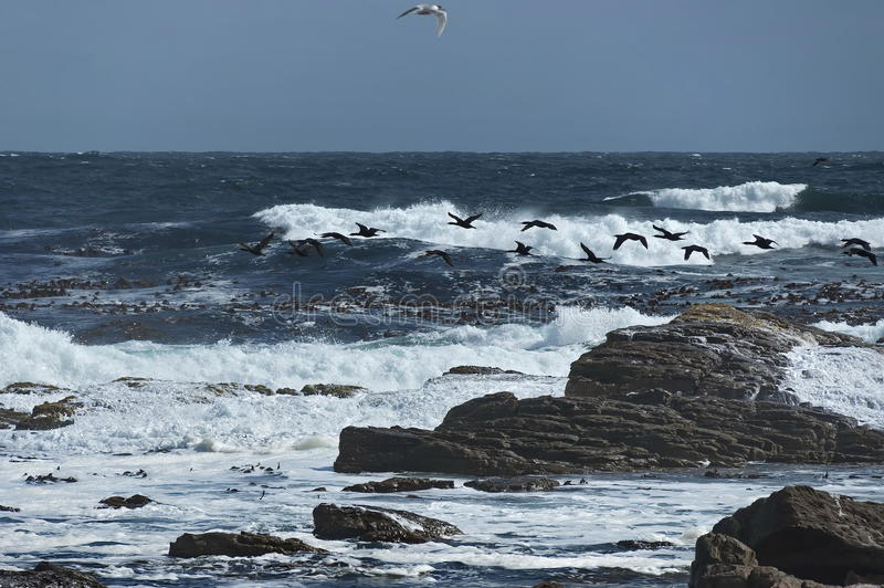 Linea costiera dell'Oceano Atlantico dal Capo di Buona Speranza fotografia stock